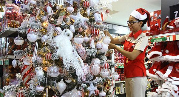 SAMBUT NATAL: Seorang pegawai Ace Hardware nampak sedang menghias pohon notol menjelang perayaan Hari Raya Natal dan Tahun Baru 2015 mendatang, Foto: Gusti A/Kaltim Post/JPNN.com