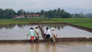 Jokowi dan Petani, dok.jpnn