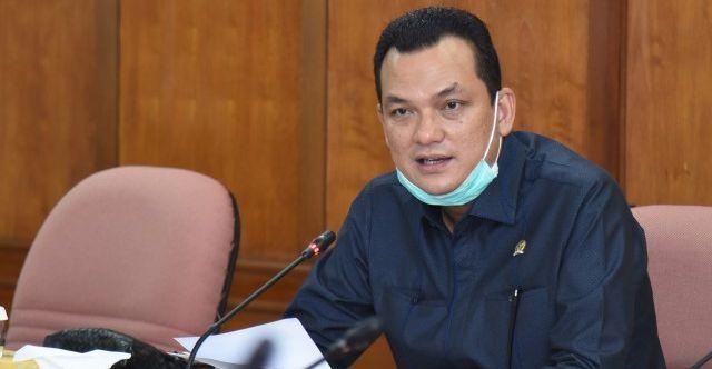 Wakil Ketua Komisi VI DPR RI Martin Manurung
